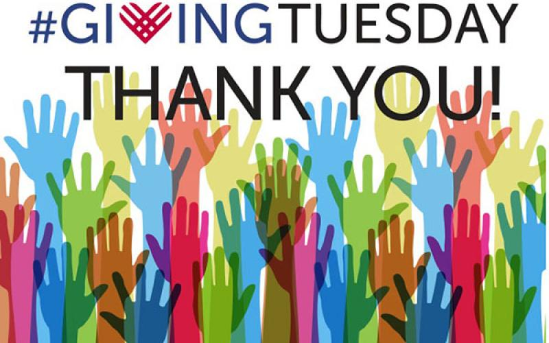 Image result for giving tuesday thank you